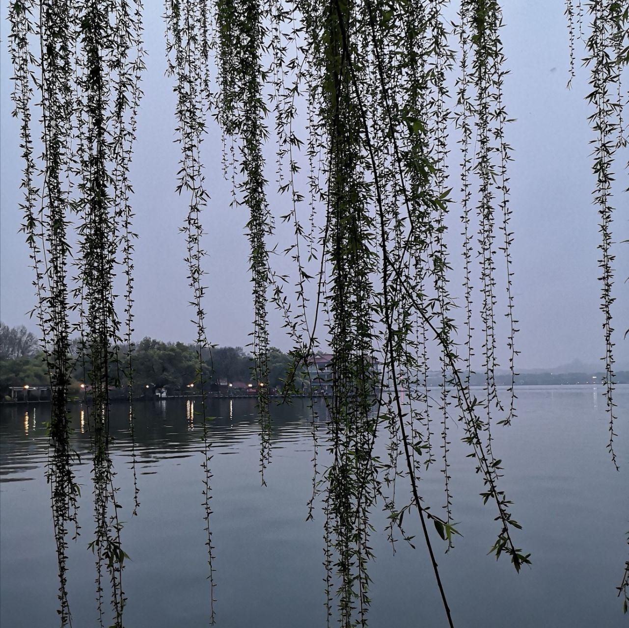 商丘西湖春天3期