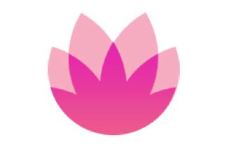 花粉俱乐部系统升级维护完成公告,站内公告 意见反馈-花粉俱乐部