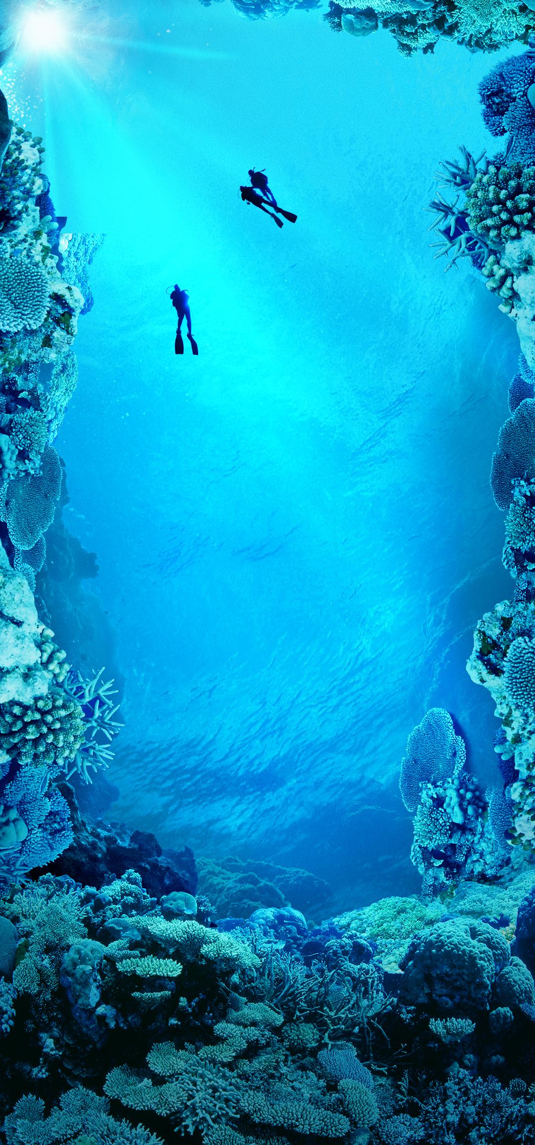 海洋.jpg