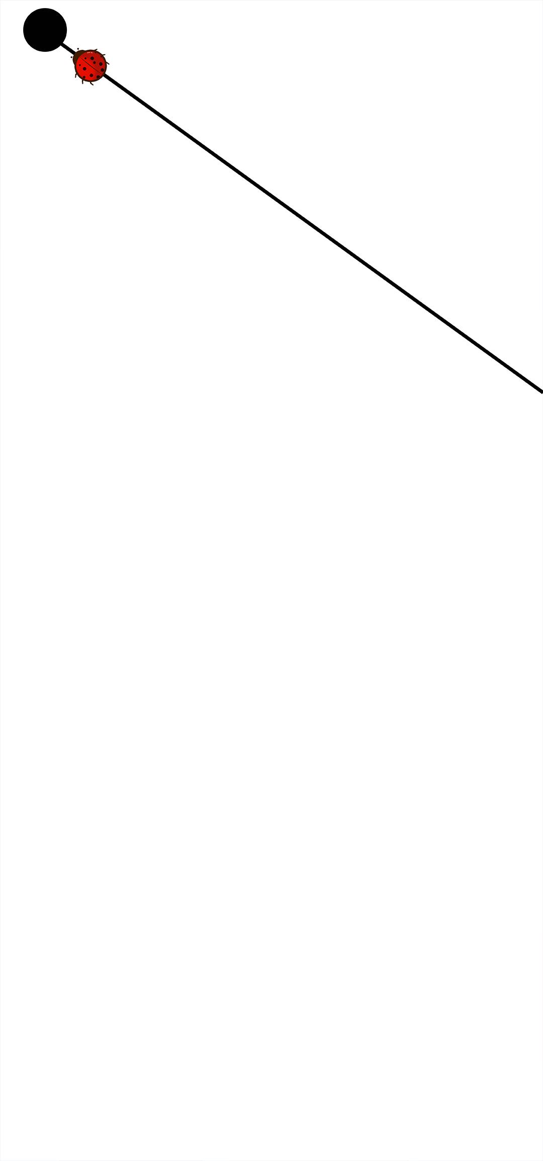 荣耀V20壁纸2.jpg