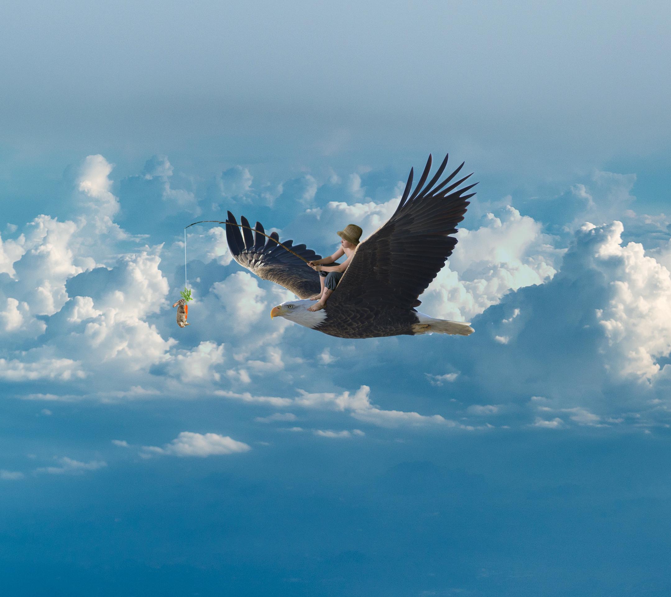 eagle-3903634.jpg