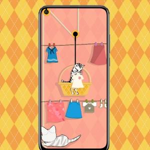 2.晾裙裙的猫主子.png