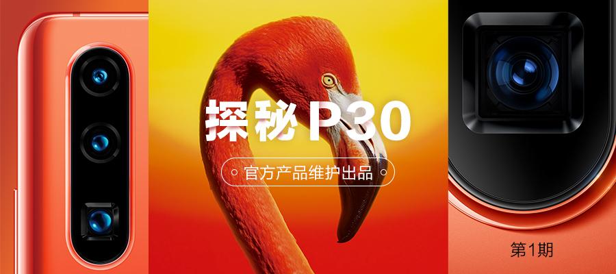 探秘P30-1.jpg