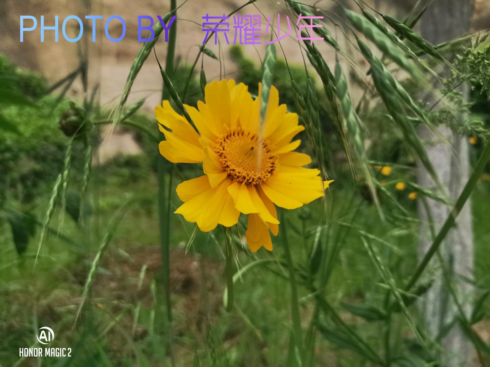 新建文件夹 (2)IMG_20190524_173017.jpg