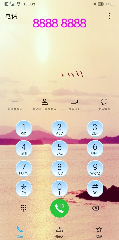 Screenshot_20190707_110335_com.android.contacts.jpg