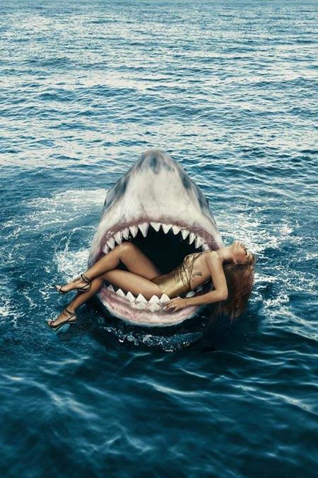 鲨女.jpg