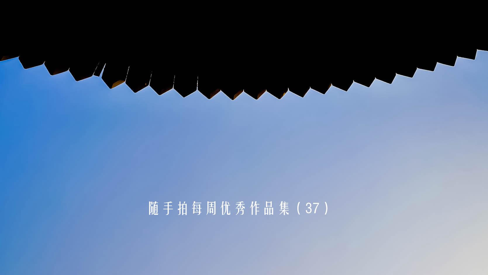 IMG_20170121_085025_副本_副本.jpg