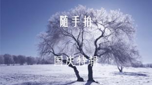 随手拍专栏banner图