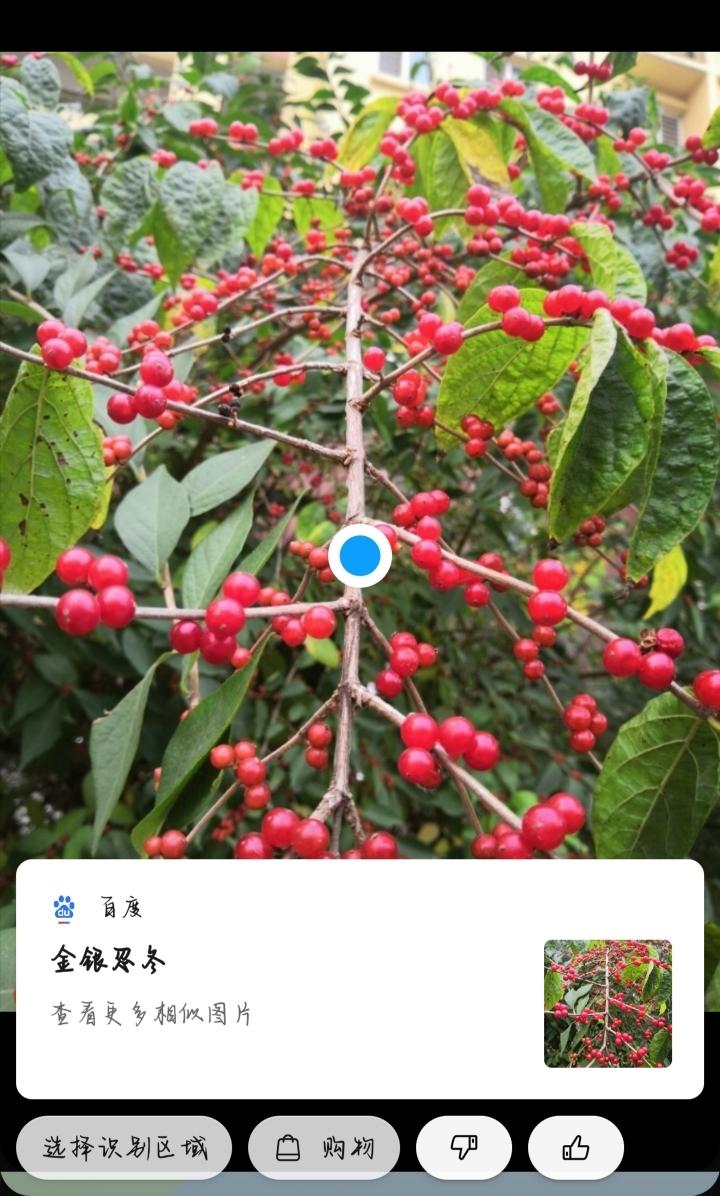 Screenshot_20191019_084658.jpg