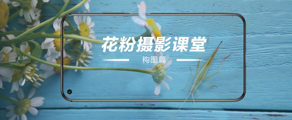 花粉摄影课堂2.jpg