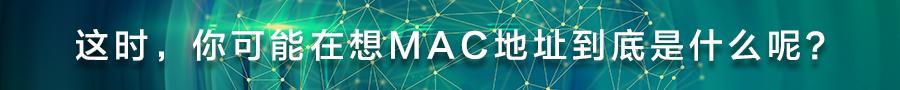 这时,你可能在想MAC地址到底是什么呢?.jpg