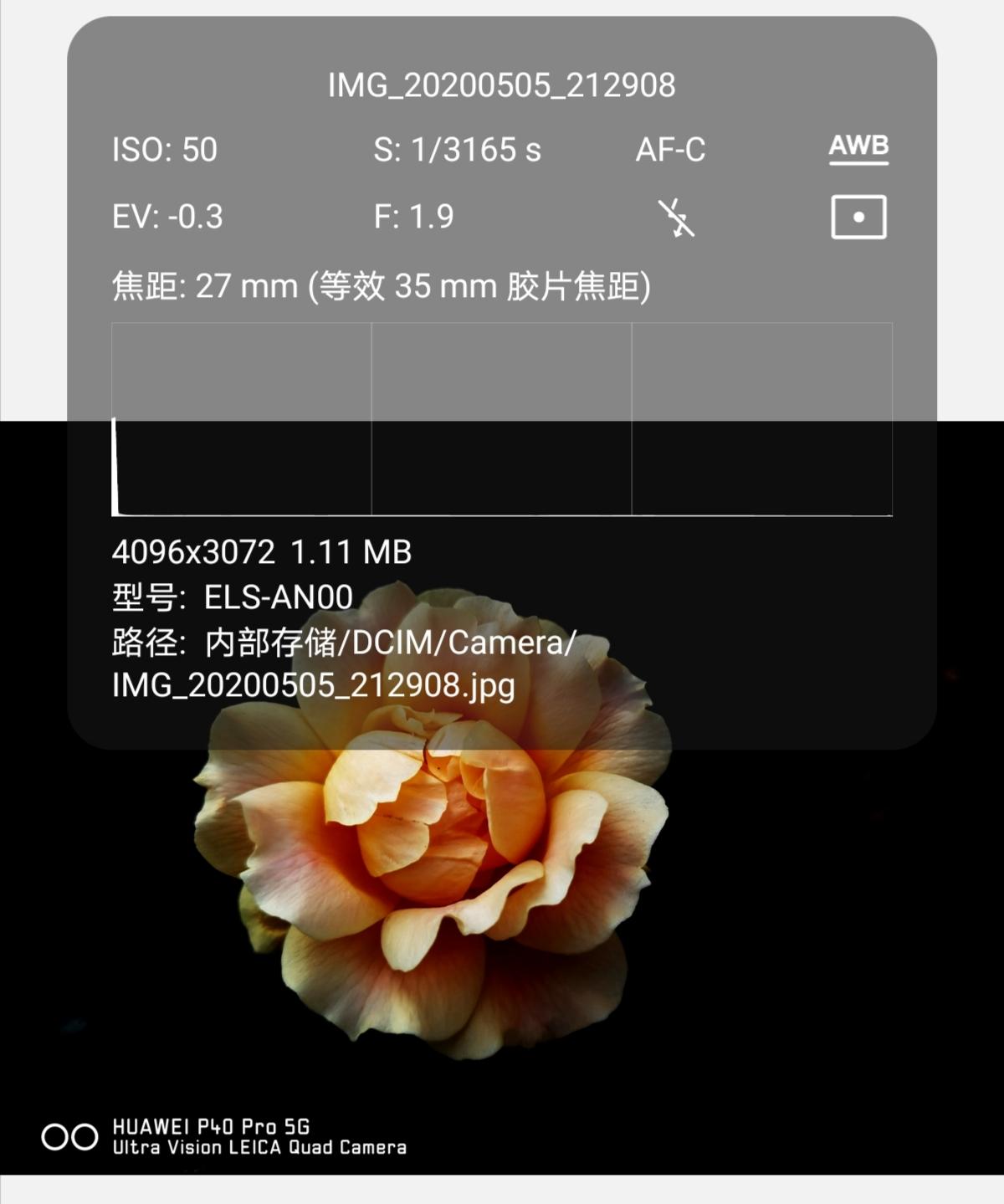 Screenshot_20200505_215152.jpg