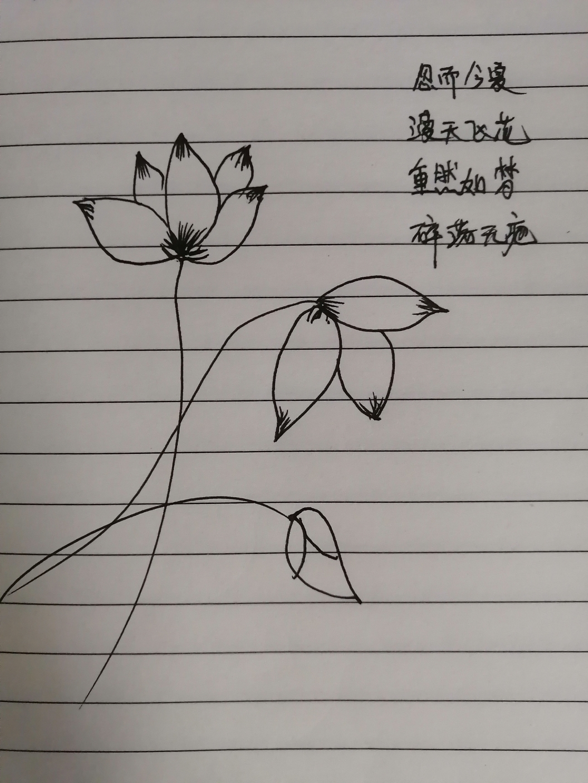 IMG_20200511_162135.jpg