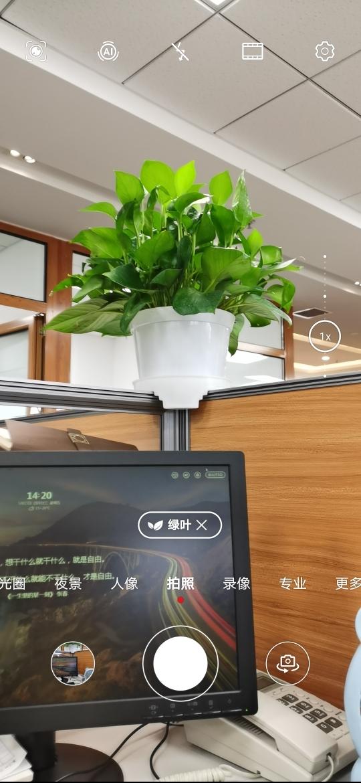 Screenshot_20200515_141940_com.huawei.camera.jpg