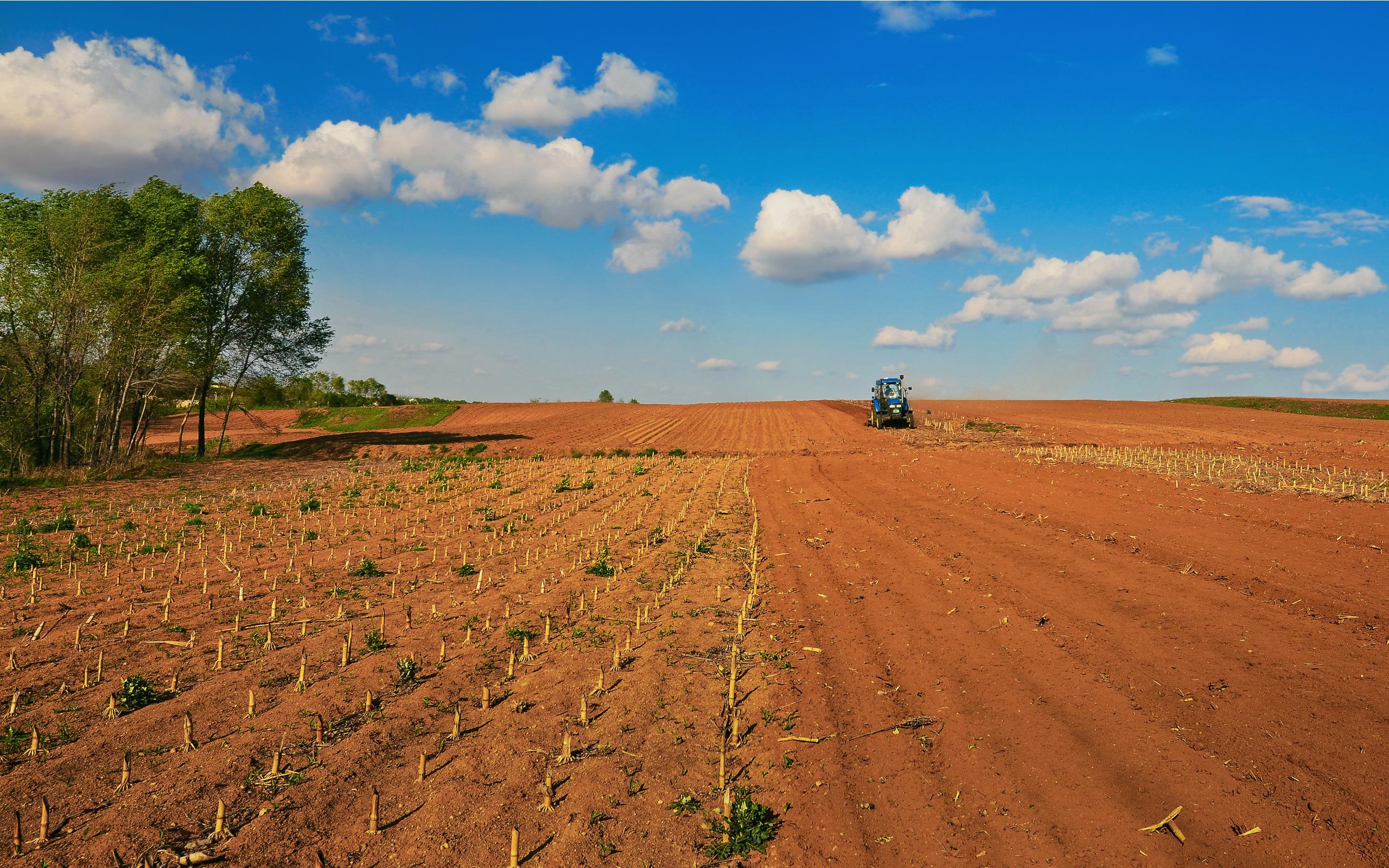 spring-ploughing2.jpg