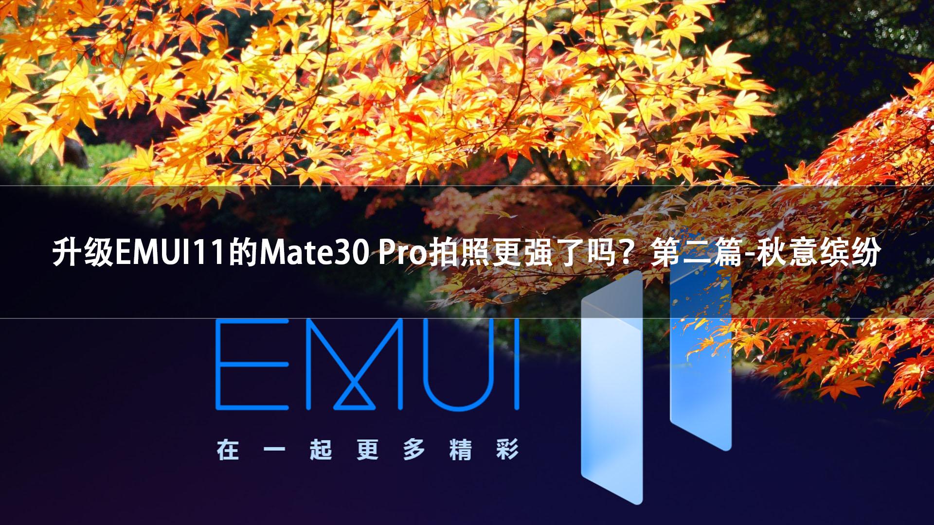 升级EMUI11的Mate30 Pro拍照更强了吗?第二篇-秋日缤纷,华为Mate30系列-花粉俱乐部