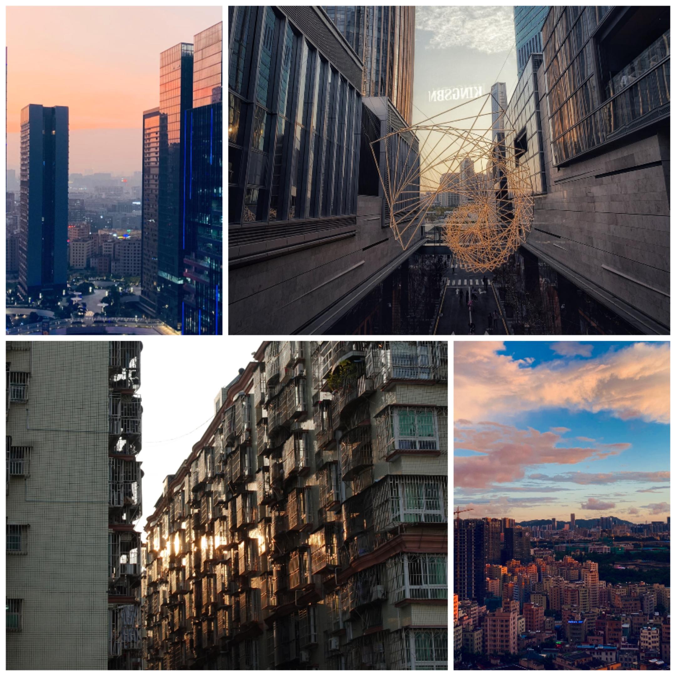 Collage_20201110_161125.jpg