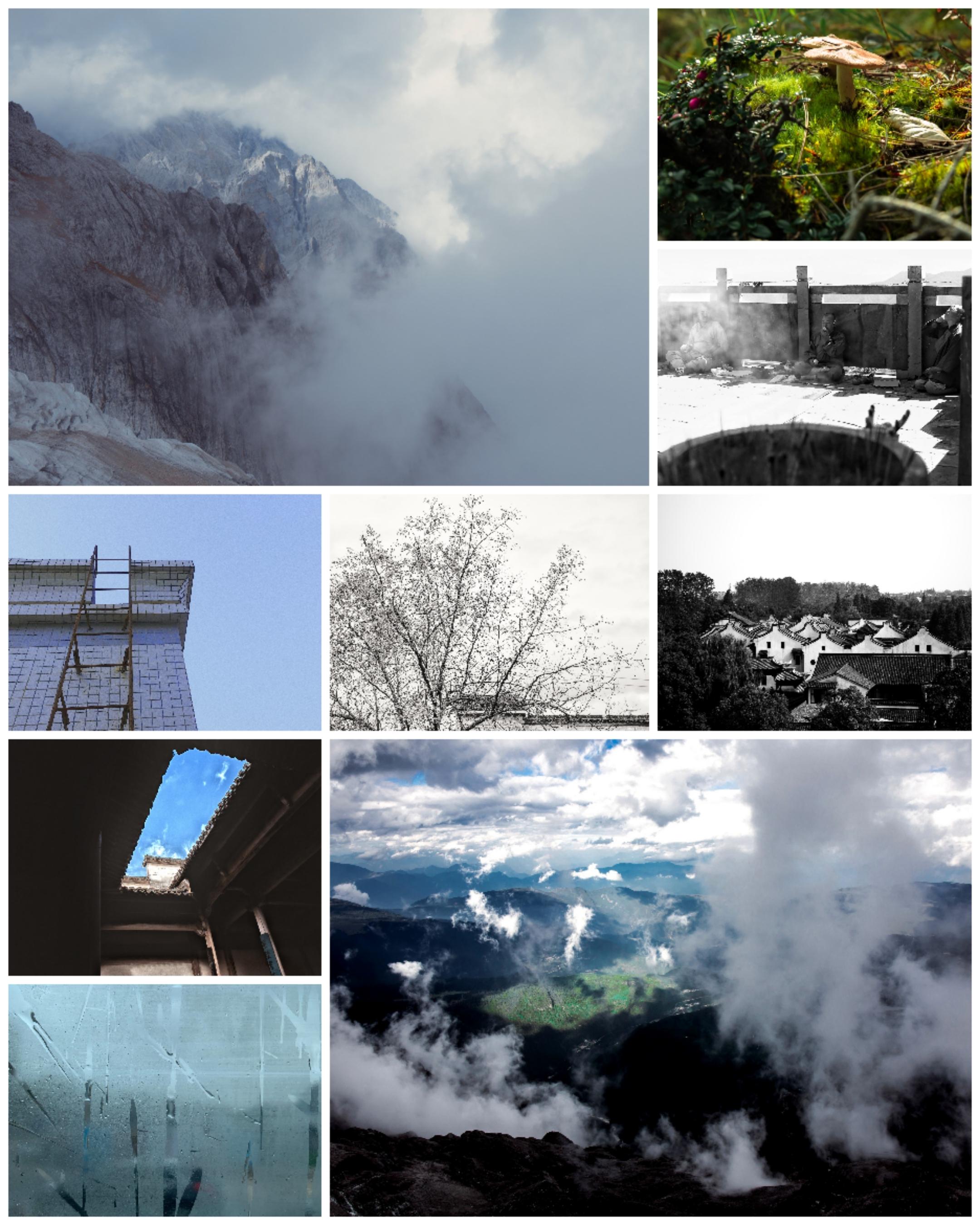 Collage_20201110_173927.jpg