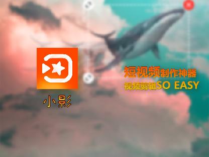 ying小影封面.jpg