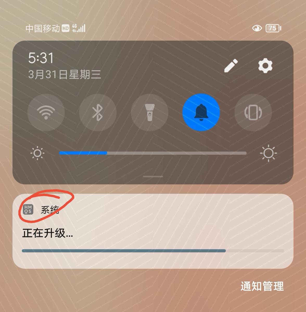 Screenshot_20210331_173133_com.huawei.android.launcher_edit_3080522971404.jpg