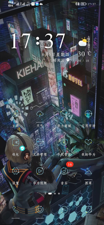 Screenshot_20210805_173705_com.huawei.android.launcher.jpg
