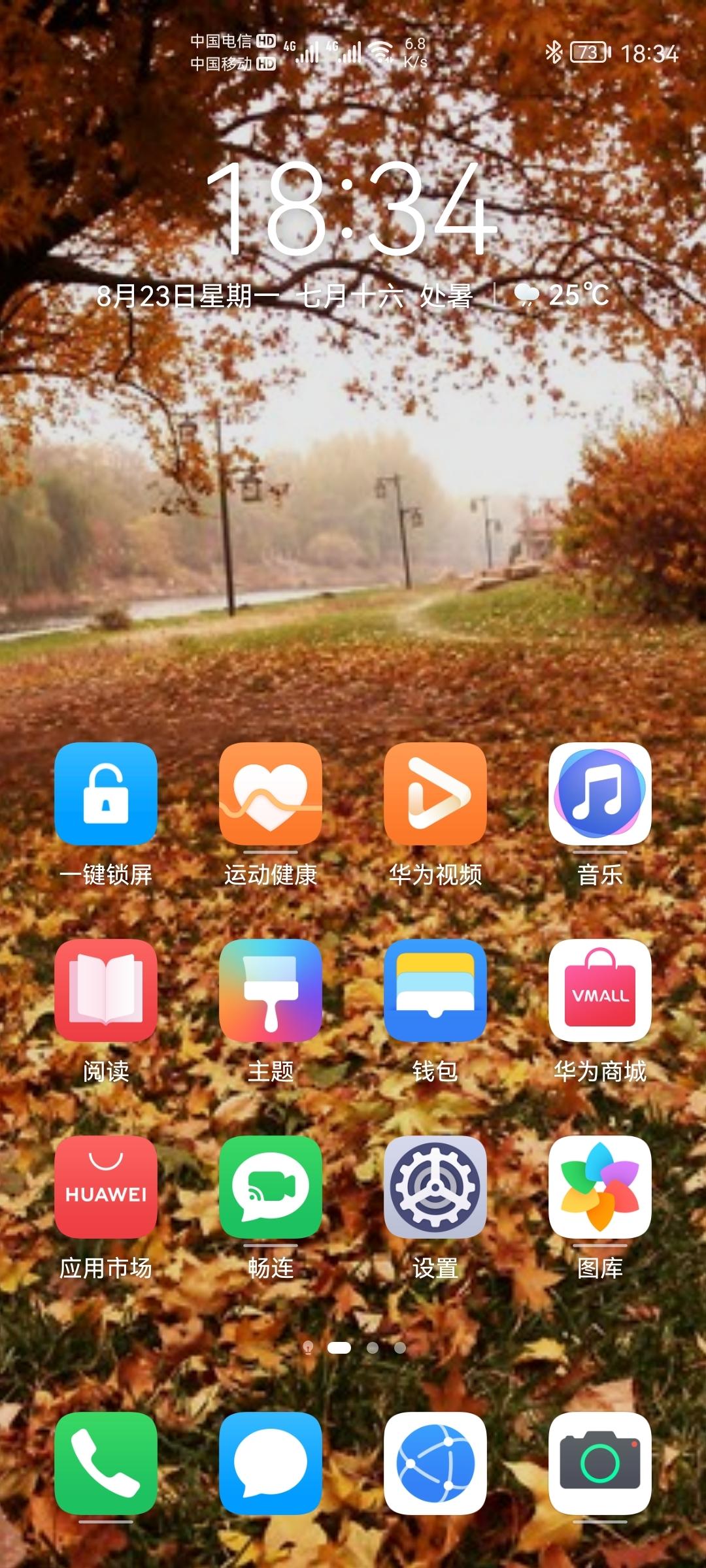 Screenshot_20210823_183437_com.huawei.android.launcher.jpg