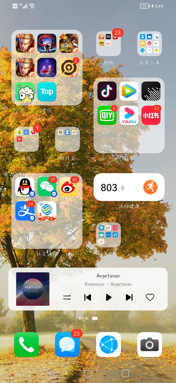 Screenshot_20210823_204446_com.huawei.android.launcher.jpg