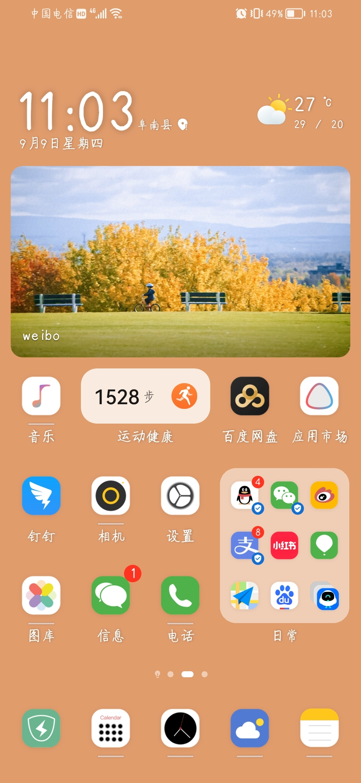 Screenshot_20210909_110348_com.huawei.android.launcher.jpg