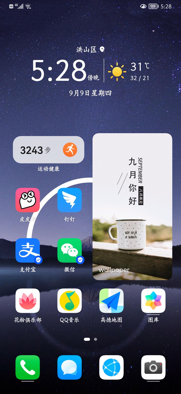 Screenshot_20210909_172832_com.huawei.android.launcher.jpg