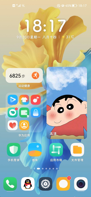 Screenshot_20210920_181710_com.huawei.android.launcher.jpg