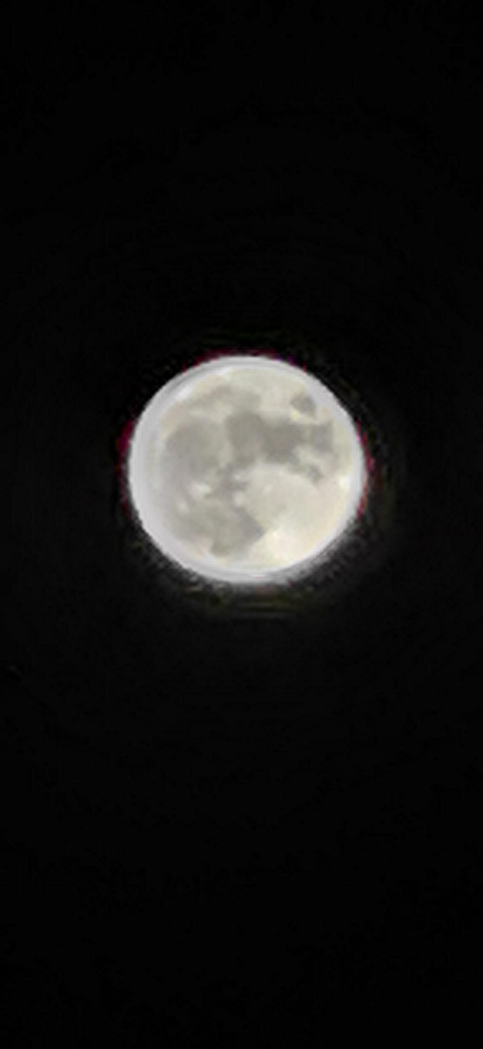 十五的月亮十四圆.jpg