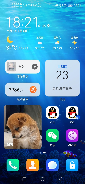 Screenshot_20210923_182156_com.huawei.android.launcher.jpg
