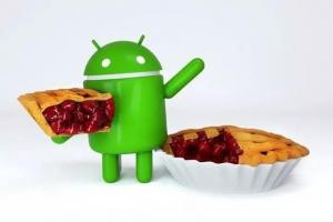 """谁是第一个吃""""馅饼""""的人?首批4款机型开启安卓9.0内部测试,荣耀10-花粉俱乐部"""