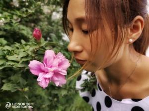 荣耀20 PRO拍照怎么样?看看摄影小白的样片就知道了,荣耀20系列-花粉俱乐部