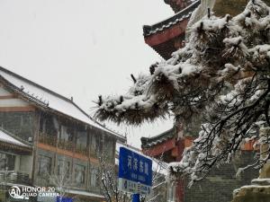 昨日西风凋碧树,一夜鱼龙舞——记2020年的第一场雪,荣耀20系列-花粉俱乐部