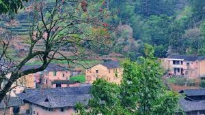 【荣耀V30PRO】层峦耸翠的山区有一个神话般的塔下村,花粉随手拍-花粉俱乐部