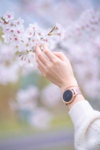 【荣耀手表2】手表和二狗,二选一。,花粉随手拍-花粉俱乐部