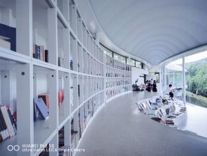 【华为P40】一朵凝固的云,山里文化书房纪实拍照,花粉随手拍-花粉俱乐部