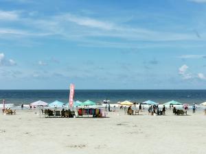 跟着P30pro镜头观阳光明媚的滨海风景,花粉随手拍-花粉俱乐部