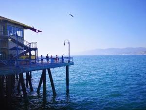 Santa Monica,花粉随手拍-花粉俱乐部