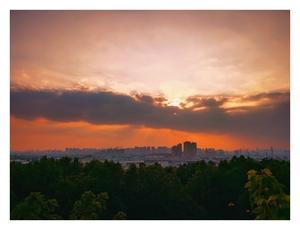 不畏浮云遮望眼,总有云开见天日,花粉随手拍-花粉俱乐部