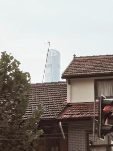 This is Shanghai【I】,花粉随手拍-花粉俱乐部