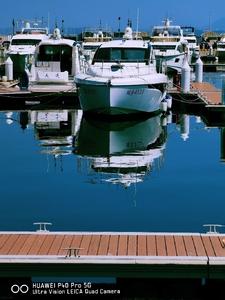 游艇码头,花粉随手拍-花粉俱乐部