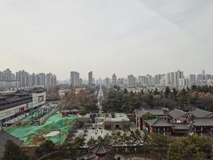 站在雁塔顶,遥看长安城,花粉随手拍-花粉俱乐部