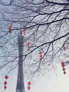 节日的广州,随手拍-花粉俱乐部