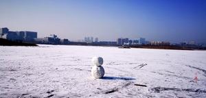 冬日湖面,花粉随手拍-花粉俱乐部