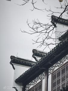 流连在秦淮河畔,青砖小瓦马头墙,花粉随手拍-花粉俱乐部