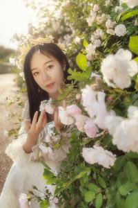 小姐姐的蔷薇之恋,花粉随手拍-花粉俱乐部