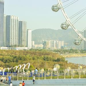 深圳欢乐港湾摩天轮,花粉随手拍-花粉俱乐部