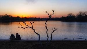 湖畔夕阳红,花粉随手拍-花粉俱乐部